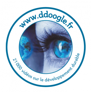 LOGODDoogle