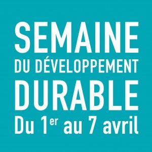 Logo SNDD bleu