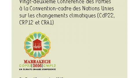 Guide to the negotiations – COP22, Marrakech, November 2016