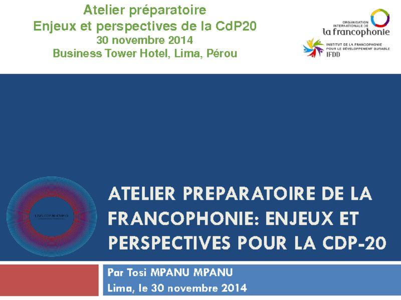 thumbnail of 2014-11-30-Atelier-Préparatoire_Presentation-6_Tosi-Mpanu-Mpanu-Financement