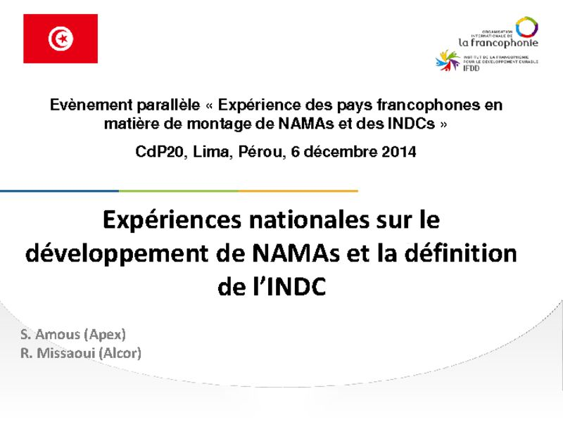 thumbnail of 2014-12-06-Side-event-NAMA-IFDD_Presentation-4_Samir-AMOUS_NAMAs-en-Tunisie_anglais