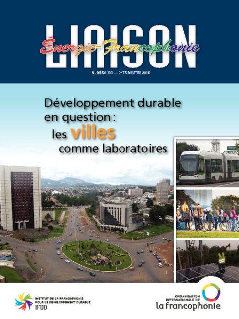 Développement durable en question : les villes comme laboratoires