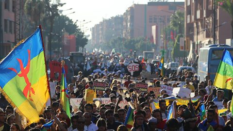Climate March, Marrakech – 2016