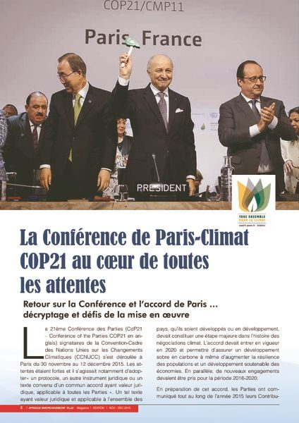 thumbnail of AEP_SPECIAL_COP_21_article
