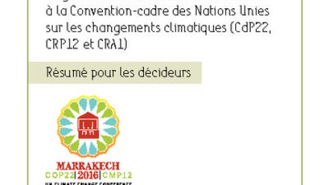 Summary for policymakers – COP22, Marrakech, November 2016