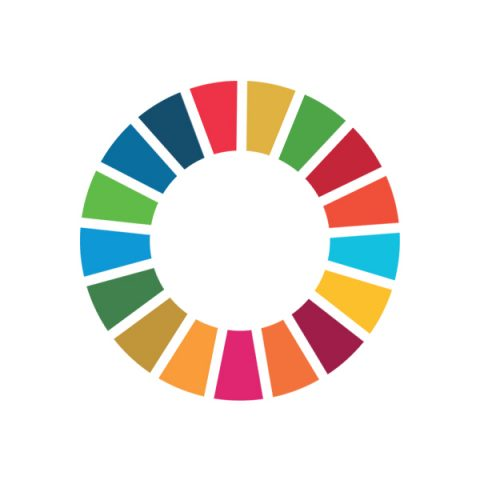 Sustainable Development Goals: why, for whom, how?