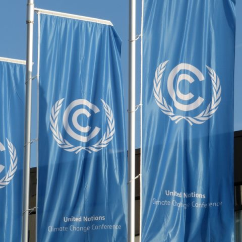 Bonn Climate Change Conference – May 2017