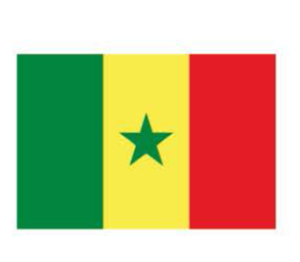 FLAG_senegal