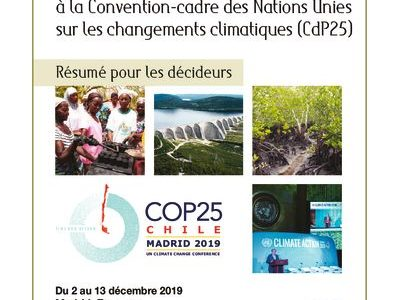 2019-11_IFDD_Resume-Negociations-Climat_CdP25_94pages_FR