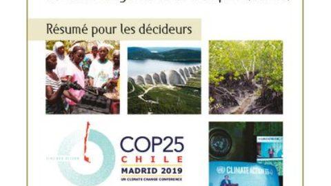 Résumé pour les décideurs – CdP25, Madrid, Décembre 2019